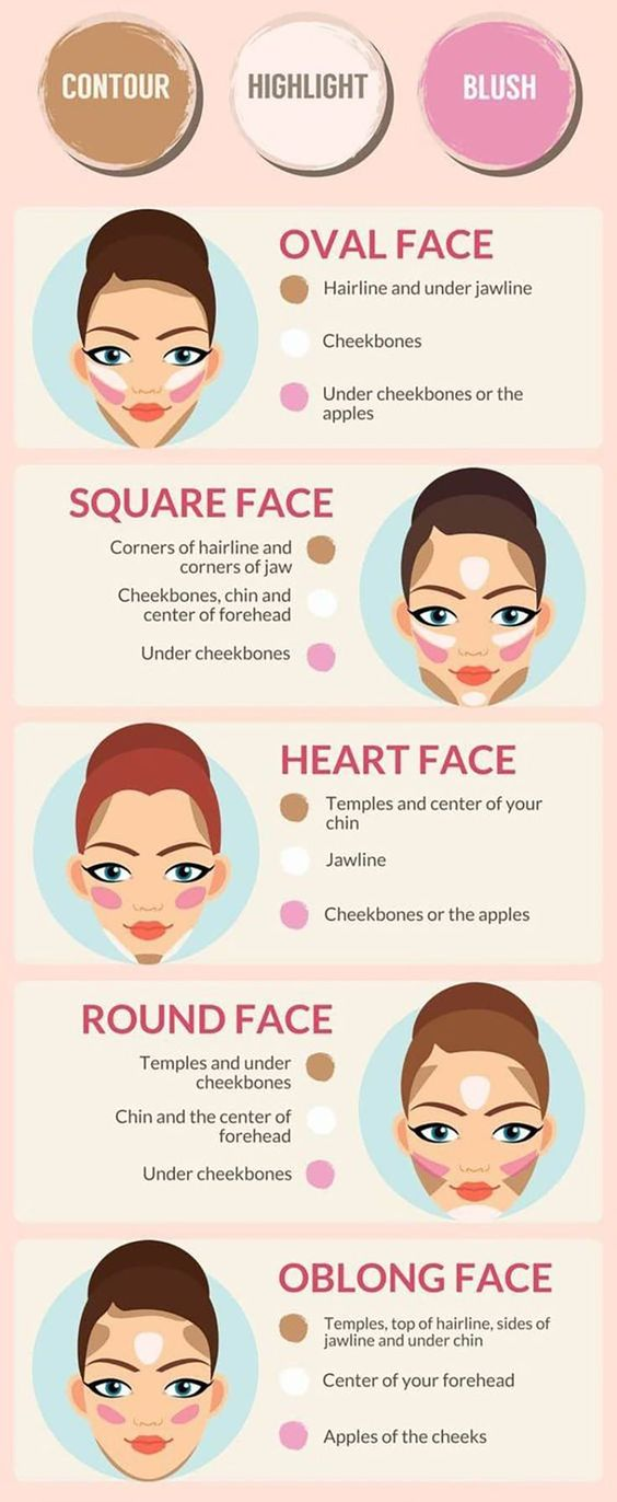 highlight and contour guide